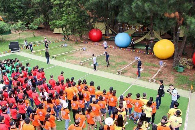 Trò chơi team building tại khu sinh thái